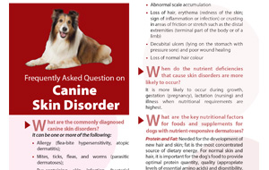 frequently-asked-questions-on-canine-skin-disorder