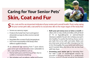 caring-for-your-seniorpets-skin-coat-and-fur