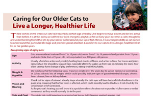 caring_foryour-older-catstolivelonger