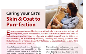 caringyour-cat's-sking&coat-to-purr-fection