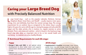caringyour_largebreed_dog