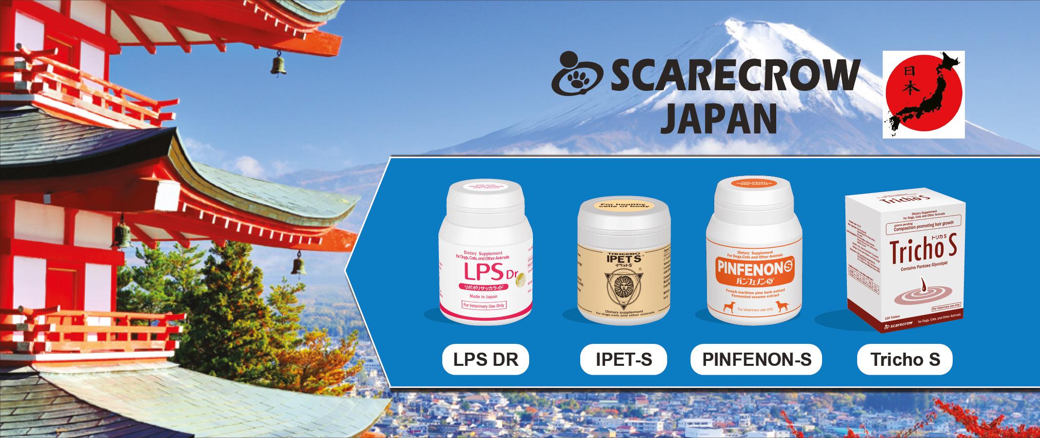 scarecrow_japan