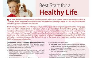 best_startfor-healthylife
