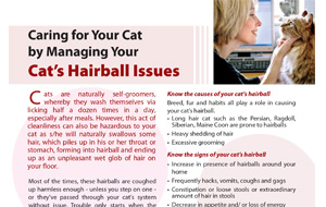 cats_hairball_issues