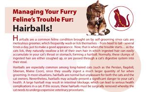 managing-your-furry-feline's-trouble-fur-hairballs