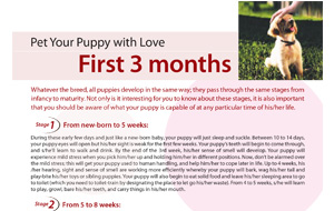 pet-your-pupywithlove-first3months