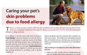 caring-yourpets-skingproblem-dueto-food-allergy