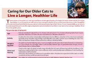 caring_foryour-older-catstolivelonger