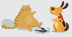obesity-in-pets-petscorner